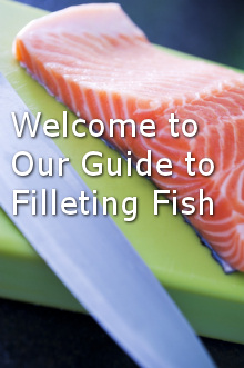 how to fillet fish