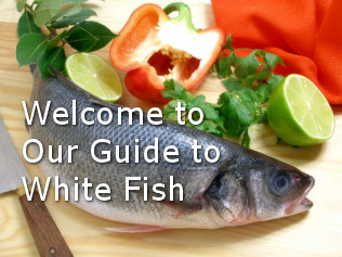 Healthiest types of whitefish for Healthiest types of fish