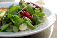 Green salad recipe collection - recipes for green salads ...