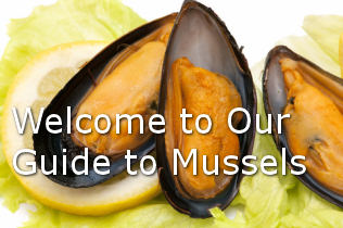 Guide to mussels